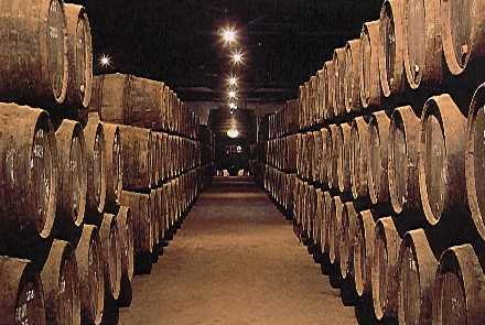 caves-vinho-do-porto